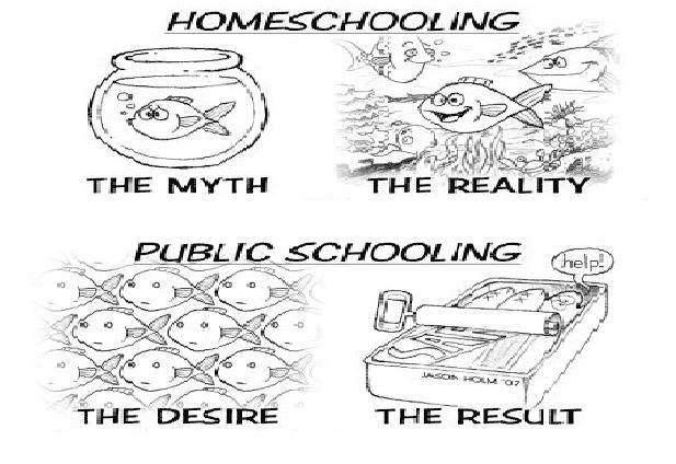 the advantages of home schooling A mom's perspective on the benefits of homeschooling an honest look from a mom on the advantage of homeschooling her nine children.