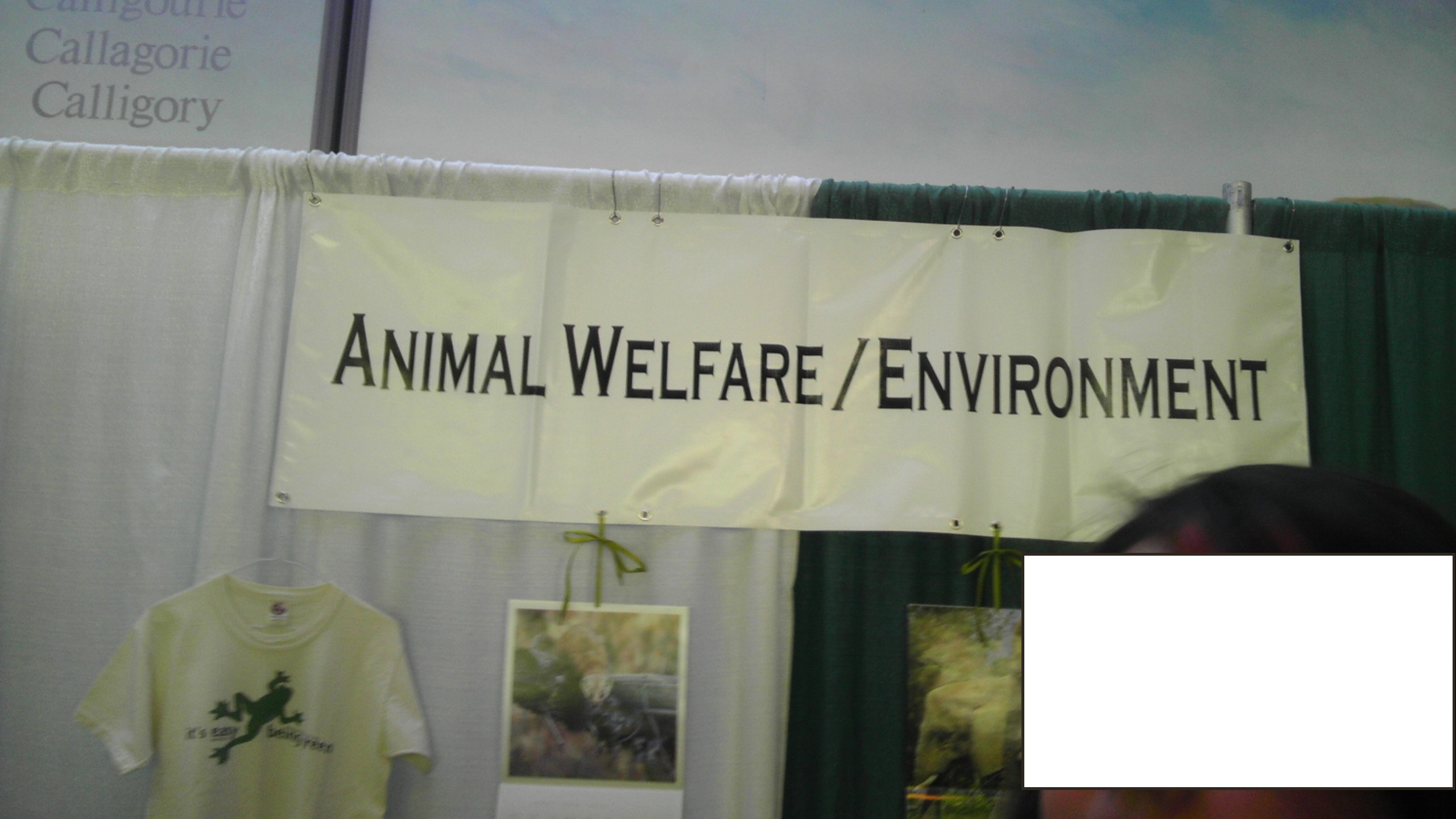 Mayor's Environment Expo 2013- Animal Welfare