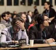 Many delegates were in frustration at the annual UN climate change conference, as discussion reached a deadlock.