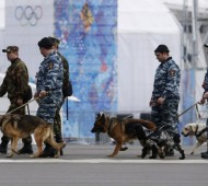 sochi-security-jan-2014