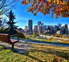 View from a park overlooking the skyline Calgary during autumn